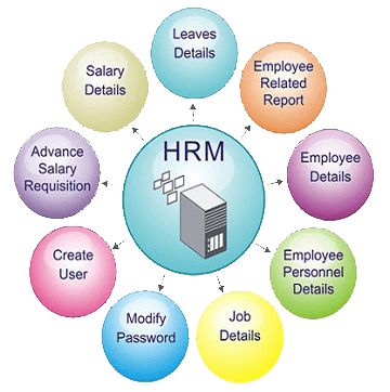 payroll management syaytem software in lucknow